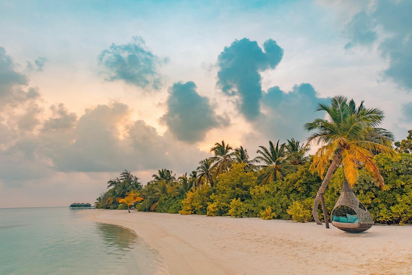Beach seaside landscape